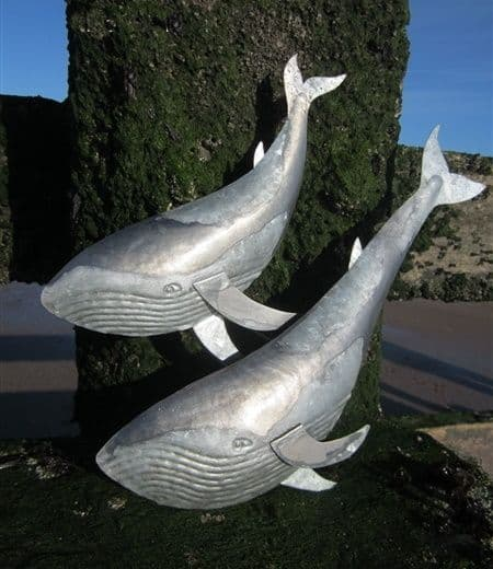 Duo of Whales