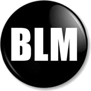 BLM Pin Button Badge Stop Racism Resist Fight for Justice Challenge Inequality Black Lives Matter