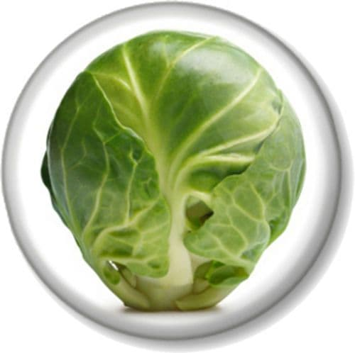BRUSSEL SPROUT Pinback Button Badge Christmas Roast Dinner Veg Novelty Funny Joke Xmas Sprouts