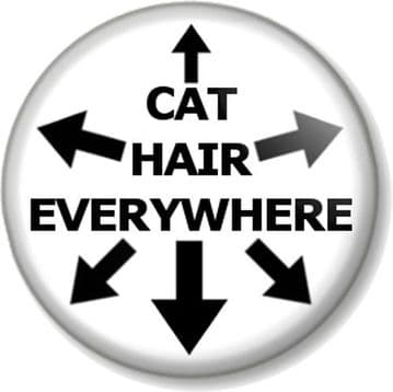 """CAT HAIR EVERYWHERE 25mm 1"""" Pin Button Badge Funny Feline Lover Humour Kitten Pussy Pet Animal"""