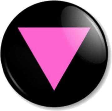 Pink Triangle Pinback Button Badge Gay Rights Pride LGBTQ Out and Proud Flag
