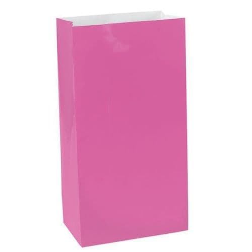 Bright Pink Mini Paper Bags 12 per pack.