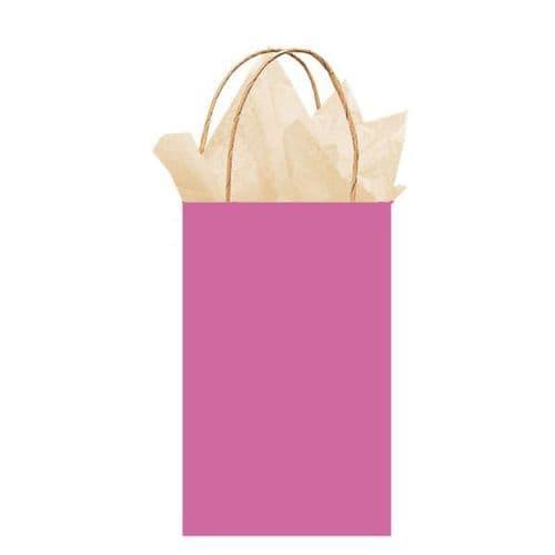 Bright Pink Paper Gift Bags 21cm x 13cm x 9cm