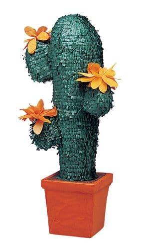 Standard Pinata Cactus