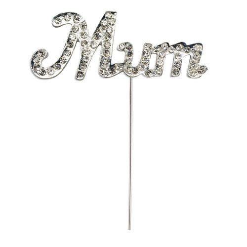 Diamante Mum on Silver Stem