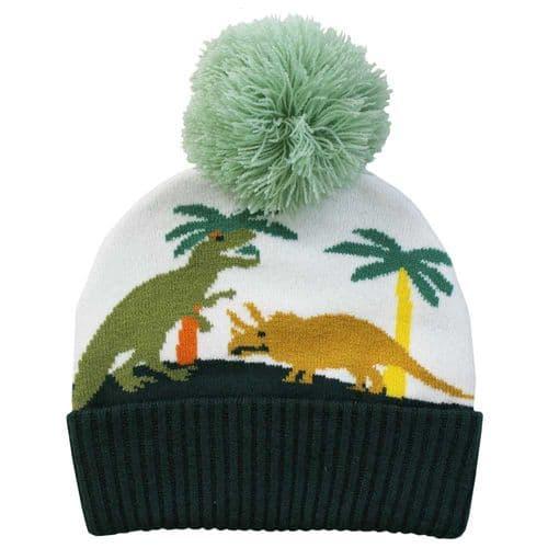Dinasaur Knitted Hat