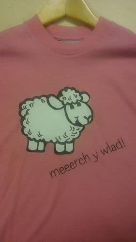 Meeerch y Wlad! T-shirt