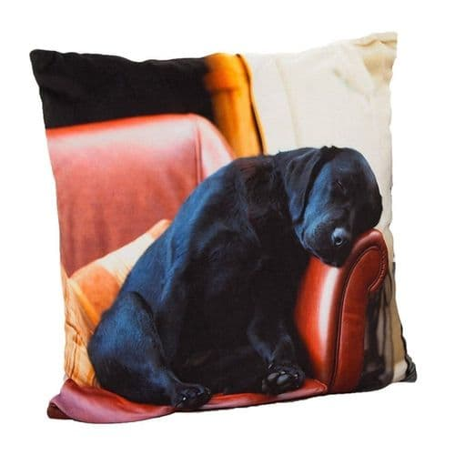 Country Matters Sleeping Lab Cushion