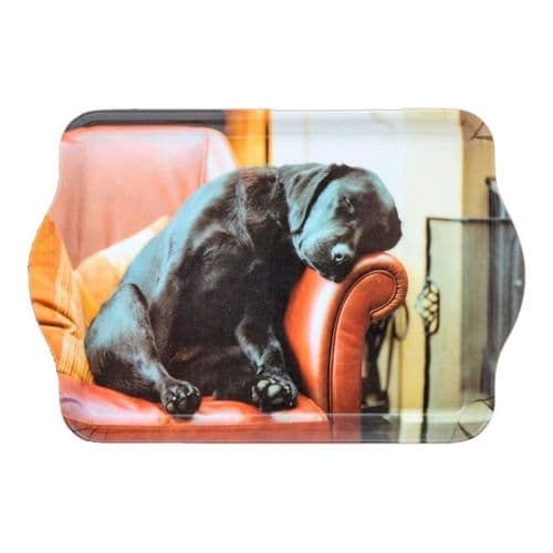 Country Matters Sleeping Lab Trinket Tray