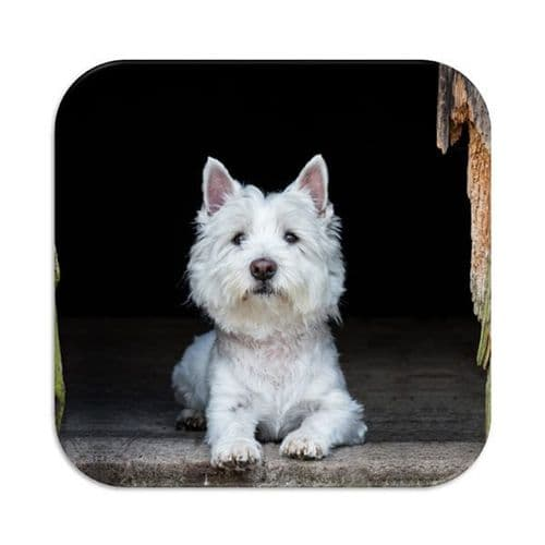 Country Matters Westie Tea, Coffee Coaster
