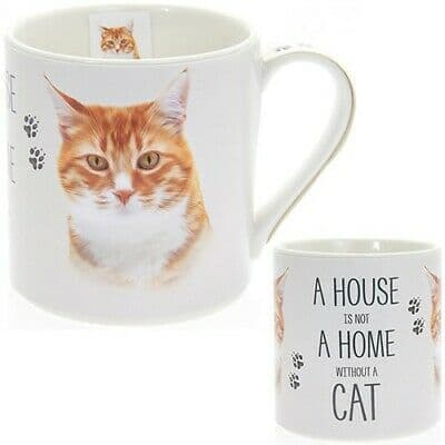 """Fine China Cat Picture """"A House is not a Home Without a Ginger Cat"""" Sentiment Boxed Mug"""