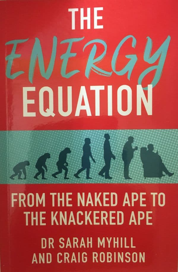 BOOK - The Energy Equation - ONE COPY - to Europe -
