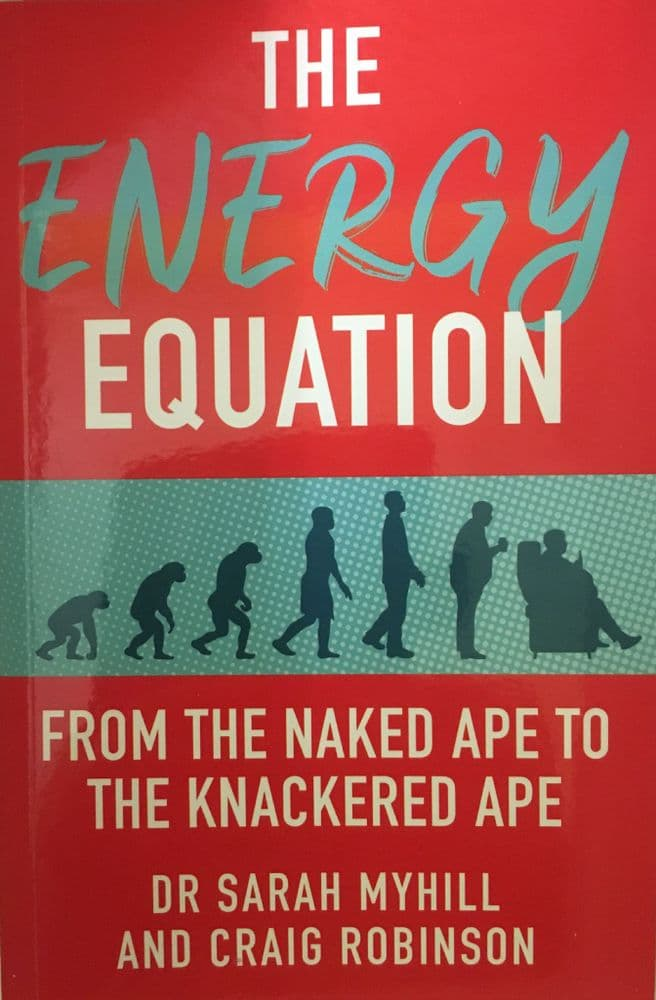 BOOK - The Energy Equation - ONE COPY - to UK
