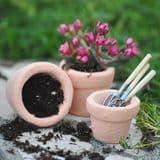 100% Peat Free - Multi Purpose New Horizon Compost -  Small 1 kilo Bag