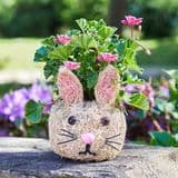 Bunny Rabbit - Rattan Pet Planter