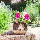 Cute Cat - Rattan Pet Planter