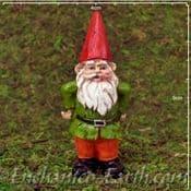 Enchanted Woodland Fairy - Sherlock the Standing Gnome