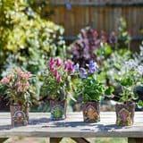 Fairy Door Pixie Pots - 10cm  - 4 designs