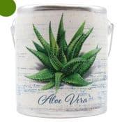 Farm Fresh Large Scented Candle in a a rustic ceramic pot -Aloe Vera -  Sage  & Citrus