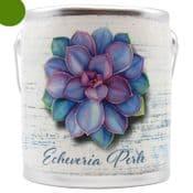 Farm Fresh Large Scented Candle in a a rustic ceramic pot - Echeveria Perle - Fresh Meyer lemon