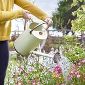 Galvanised Steel Country Cream Watering Can - 9L
