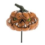 Georgetown Fiddlehead  Fairy Garden - Scary Pumpkin