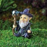 Georgetown -Fiddlehead Garden Wizard
