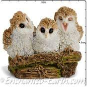 Georgetown Fiddlehead - Trio of Owlets - 5cm