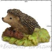 Georgetown Fiddlehead - Woodland Hedgehog in leaves - 3cm