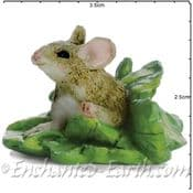 Georgetown Fiddlehead - Woodland mouse in leaves - 3cm