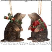 Gisela Graham - Pair of Country Moles -  Christmas Tree Decorations  - 6.5cm