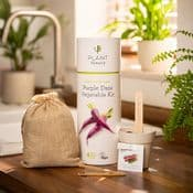 Grow Your Own - Purple Daze Vegetable Kit - Vegan & Plastic Free