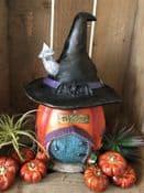 LED , Colour changing lights - Witches Hat Pumpkin Cottage -  large 28cm