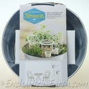 Miniature Garden Gift Set - With Zinc Planter & 5 items