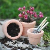 Miniature  Garden Handmade Clay Flower Pots - Set of Three