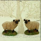 Pair of Miniature Garden Sheep with Black Faces - 5cm