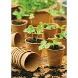 Peat Free Fibre Pots - Pack of 96 - 100% Biodegradable