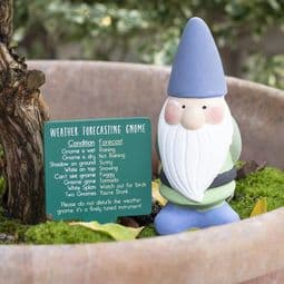 Terracotta 'weather forecasting' gnome - Choose from 3 colours - 15cm Tall.