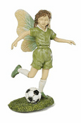 Woodland Knoll - Going For Goal - Football Fairy
