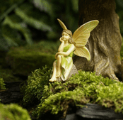 Woodland Knoll  Quiet Moment Fairy