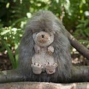 Wrendale Designs  - Mabel The Hedgehog  - Super Soft Plush Toy  & Bag - 210mm
