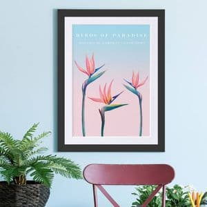 Birds Of Paradise Botanical Art